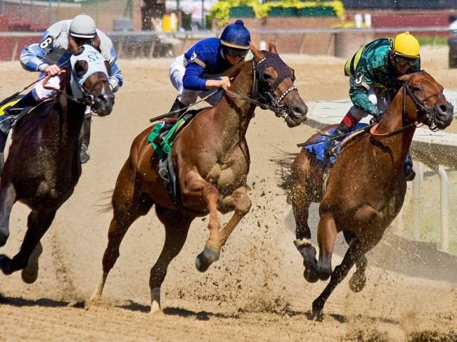 horse-racing-dust-blowing_96007-1600x1200